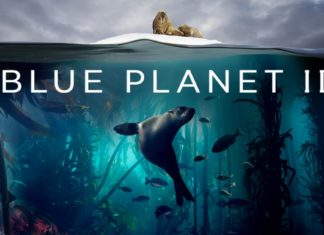 Awe-inspiring 'Blue Planet II' leads December streaming lineup